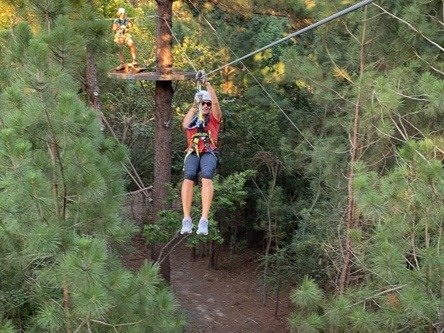 Zipline in trees 2